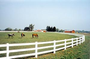 3 Rail Saginaw Valley Fence