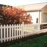 Dogwood Fence